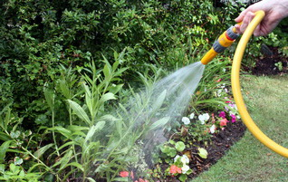 Home and Garden Maintenance